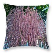 San Clemente Sunday Throw Pillow