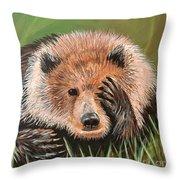 San Diego Bear Throw Pillow