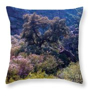 San Diego County Canyon Throw Pillow