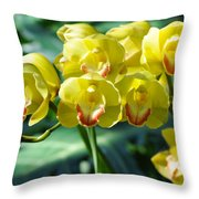 San Diego Yellow Orchids Throw Pillow