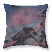 San Diego Palms Throw Pillow