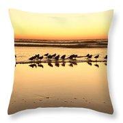 San Diego Shorebirds Throw Pillow