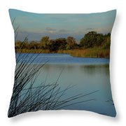 San Joaquin Wildlife Sanctuary Throw Pillow