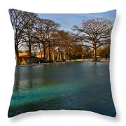 San Pedro Park Throw Pillow