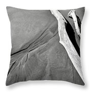 Sand And Driftwood Throw Pillow