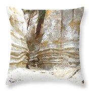 Sand Canyon Of San Clemente Throw Pillow