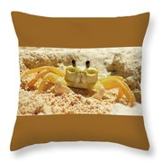 Sand Crab Throw Pillow