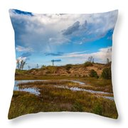 Sand Dunes In Indiana Throw Pillow