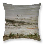 Sand Dunes Of The Pacific Throw Pillow
