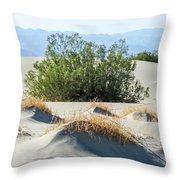 Sand Dunes, Plants, Mountains Throw Pillow