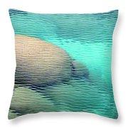Sand Harbor Ripples Throw Pillow