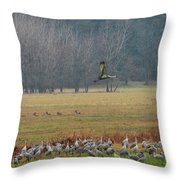 Sand Hill Crane Migration Throw Pillow