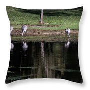 Sand Hill Cranes Dining Room Throw Pillow