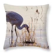 Sand Hill On The Shores Throw Pillow