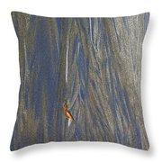 Sand Patterns At Moeraki Throw Pillow