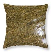 Sand Stars Throw Pillow