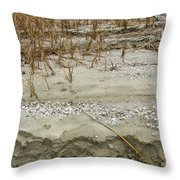 Sand Stone And Reeds Throw Pillow