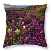 Sand Verbena Coyote Mountains Anza Borrego State Park California Throw Pillow