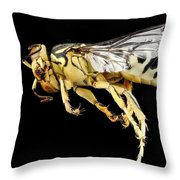 Sand Wasp Throw Pillow