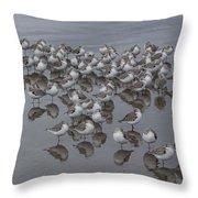 Sanderlings On The Shore Throw Pillow
