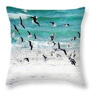 Sandestin Seagulls B Throw Pillow