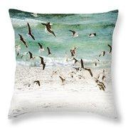 Sandestin Seagulls D Throw Pillow
