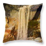 Sandfall Throw Pillow