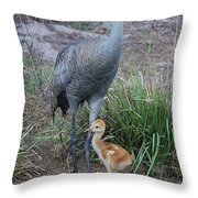 Sandhill 9 Throw Pillow