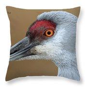 Sandhill Crane 6 Throw Pillow