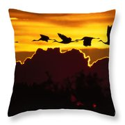 Sandhill Crane At Sunset Throw Pillow