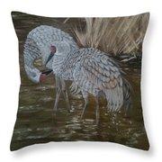 Sandhill Crane Couple Throw Pillow