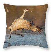 Sandhill Crane Dance Throw Pillow