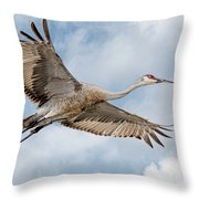 Sandhill Crane In Flight Throw Pillow
