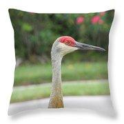 Sandhill Crane In Sarasota Throw Pillow