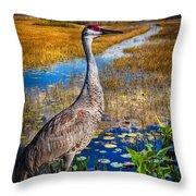 Sandhill Crane In The Glades Throw Pillow
