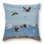 Sandhill Crane Migration Throw Pillow by Bitter Buffalo Photography