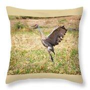 Sandhill Crane Morning Stretch Throw Pillow