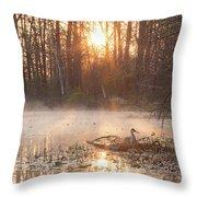 Sandhill Crane On Nest Throw Pillow