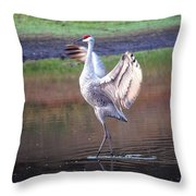 Sandhill Crane Painted Throw Pillow