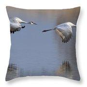 Sandhill Crane Returning Throw Pillow