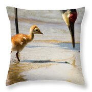 Sandhill Crane With Chick Throw Pillow