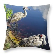 Sandhill Cranes At The Lake Throw Pillow