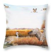 Sandhill Cranes-jp3159 Throw Pillow