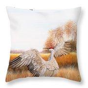 Sandhill Cranes-jp3161 Throw Pillow