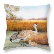 Sandhill Cranes-jp3162 Throw Pillow