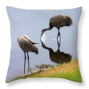 Sandhill Cranes Reflection On Pond Throw Pillow
