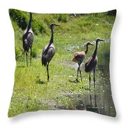 Sandhill Family By The Pond Throw Pillow