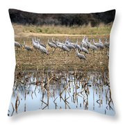 Sandhill Herd By Pond Throw Pillow