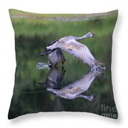 Sandhill Retreat Throw Pillow