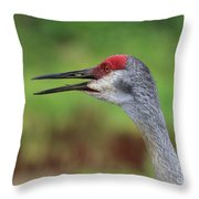 Sandhill Song Throw Pillow